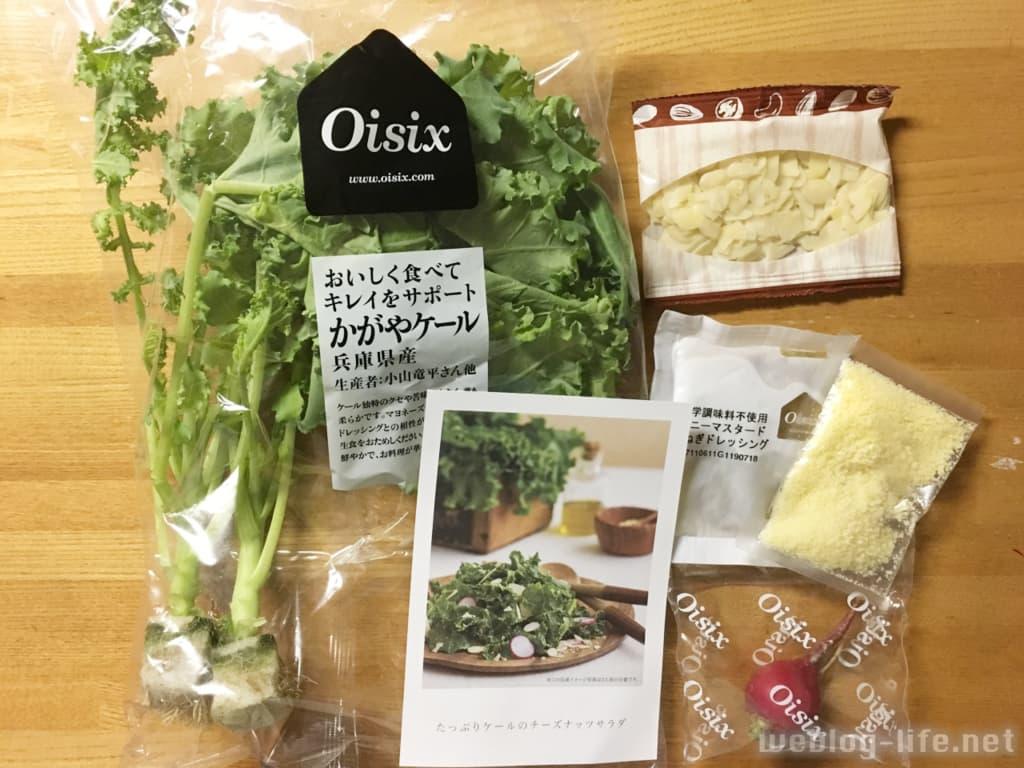 オイシックス お試しセット  たっぷりケールのチーズナッツサラダ